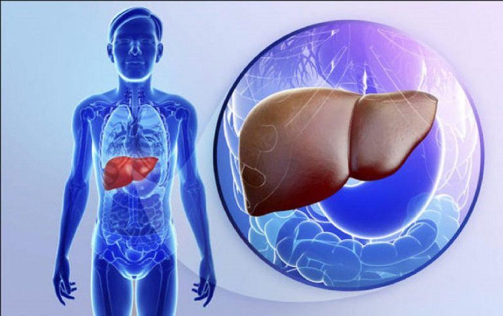 Planta care tratează bolile de ficat şi vindecă hepatitele virale